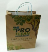 Color Printing Paper Bag With Twill Handle