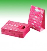 Hot Sale Paper Carrier Bags